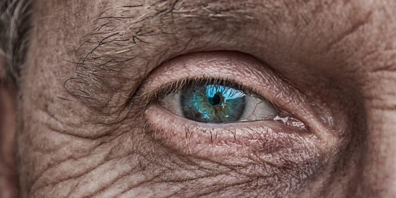 Apám szemével